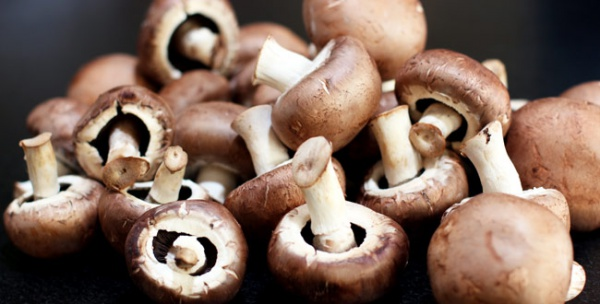 to-grow-mushrooms-for-profit